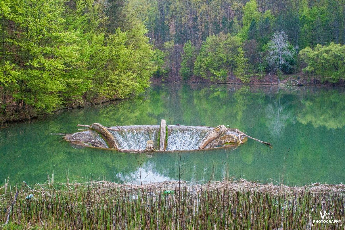 Lacul Vida din Luncasprie