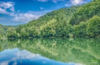 in the morning on Vida Lake