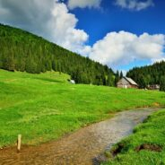 Trail: Glăvoi camping – Casa de Piatra