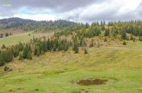 Trail: Ştei – Şaua Vârtop