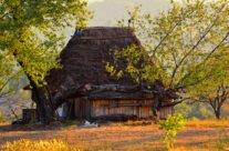 Casa ţărănească tradițională din Rosia