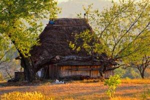 casa ţărănească tradițională Rosia