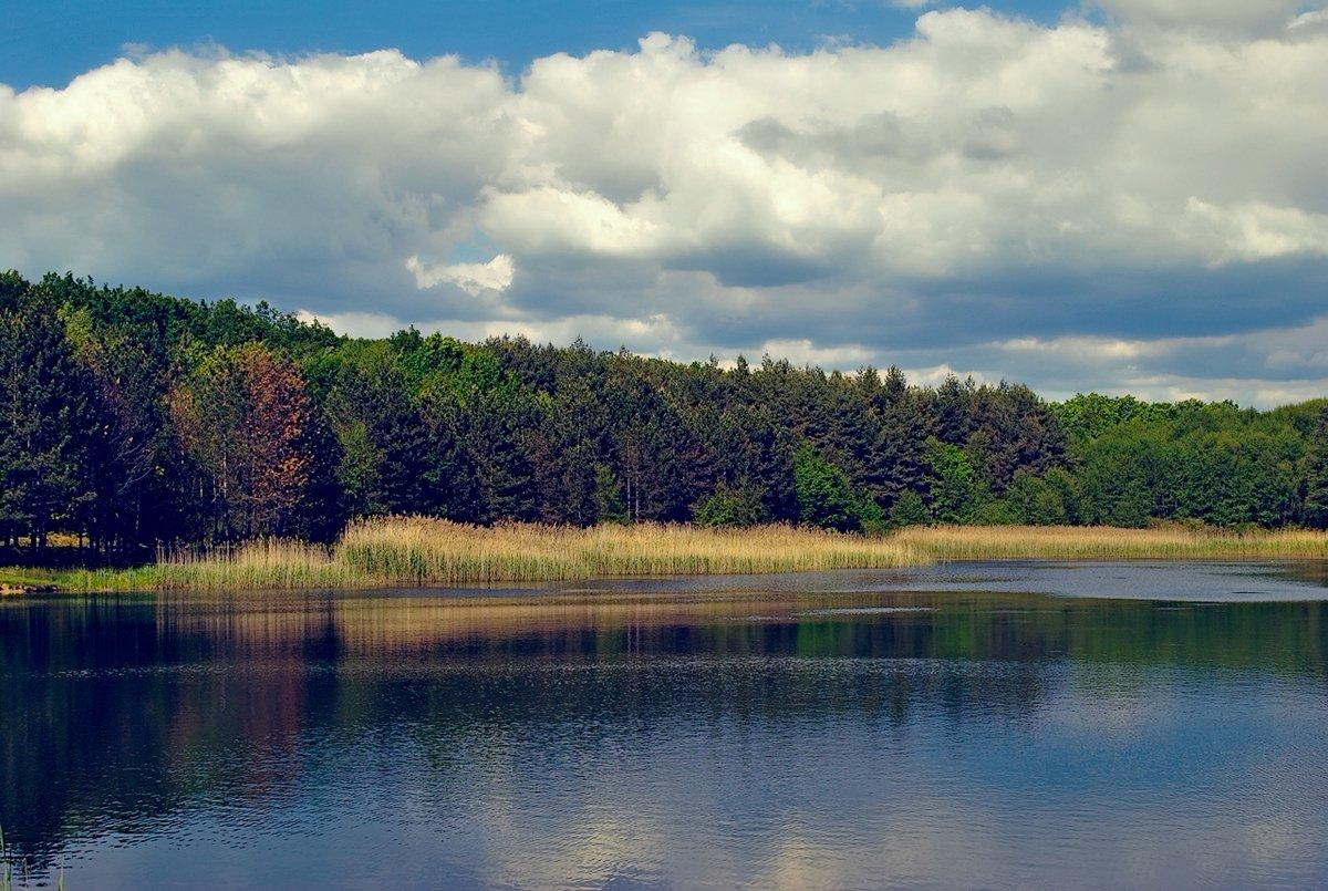 Lacul de acumulare din Ștei