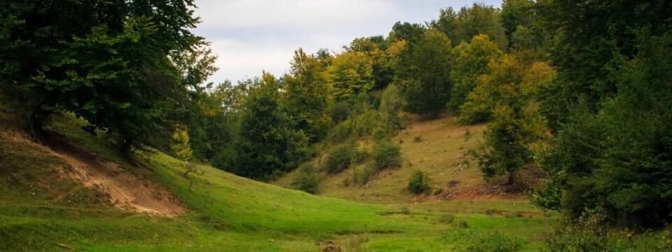 Peisaj pitoresc in apropiere de satul Fasca