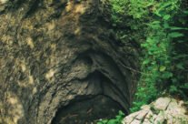 Borțig vertical cave