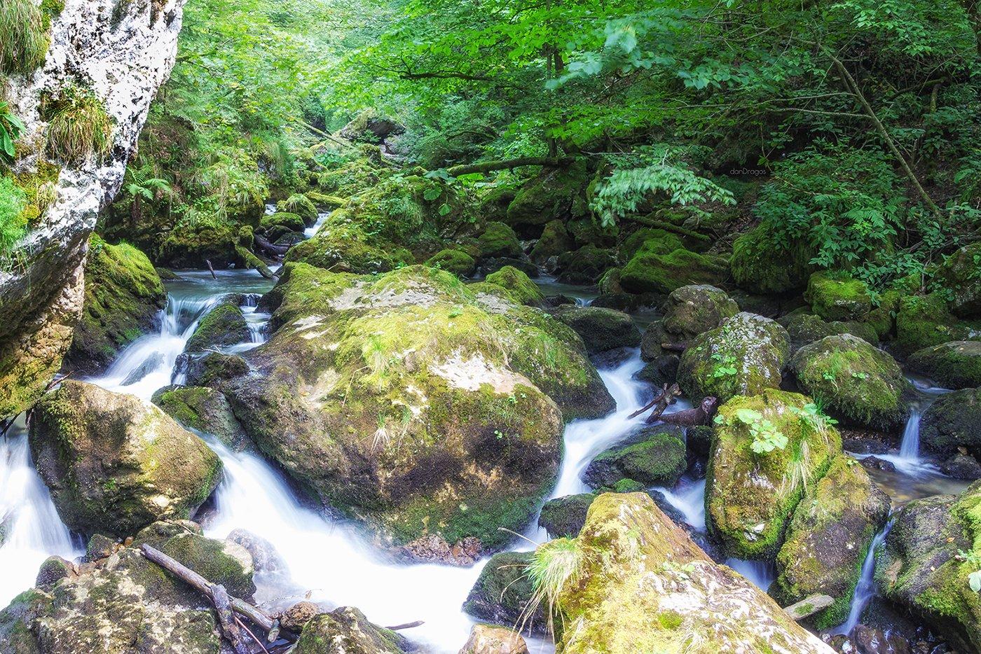 Galbena gorge
