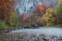 Crișul Repede River near Șuncuiuș