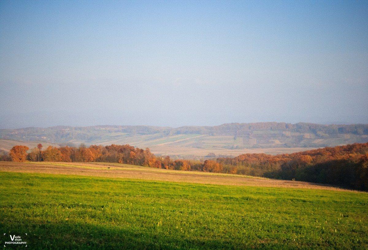 Bihorul Pitoresc: Comuna Ceica