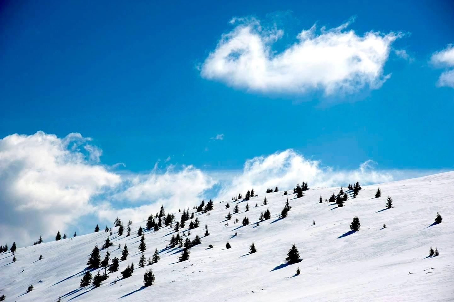 Iarna pe Vârful Bihor