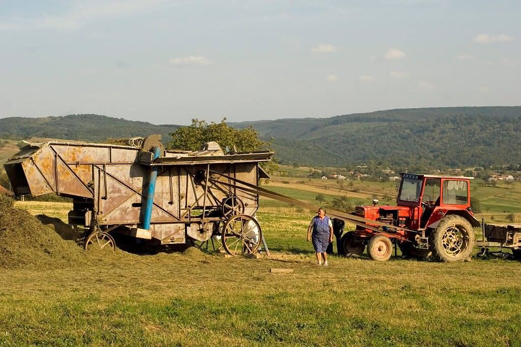 La muncă, Vărciorog