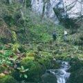 Peştera cu Apă de pe Valea Leşului