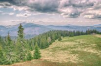 Vedere panoramică spre Munții Bihorului