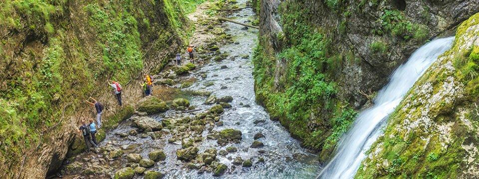 Circuit trail: Galbena valley