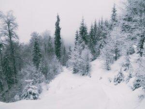 Stana de Vale iarna