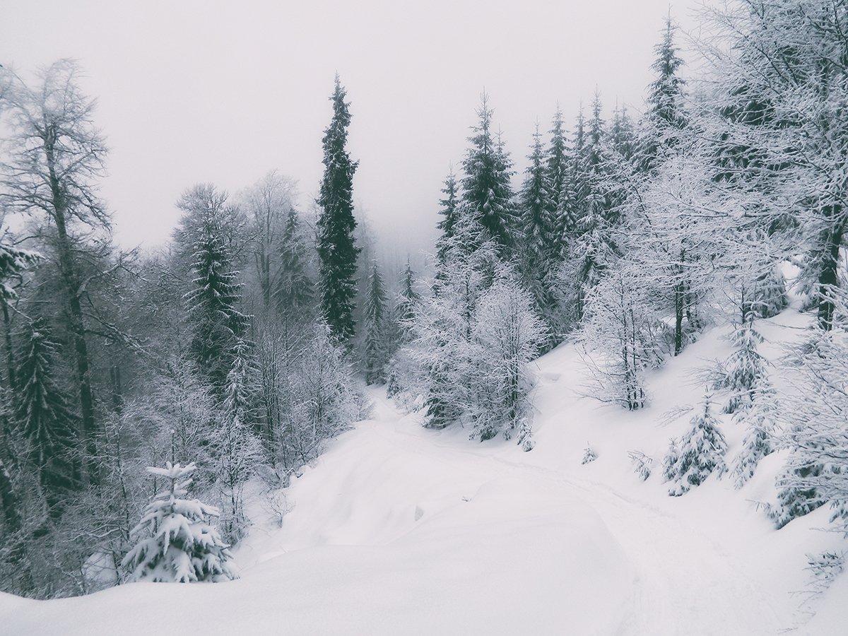 Stâna de Vale, iarna