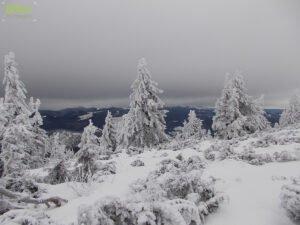 Vedere panoramică de pe Vf Piatra Grăitoare