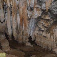 Trail: Vadu Crişului cave – Bătrânului cave
