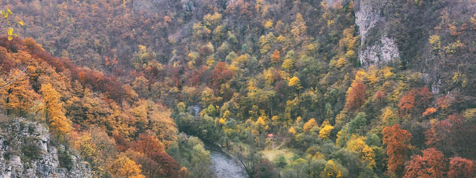 Autumn Landscape in Pădurea Craiului Mountains