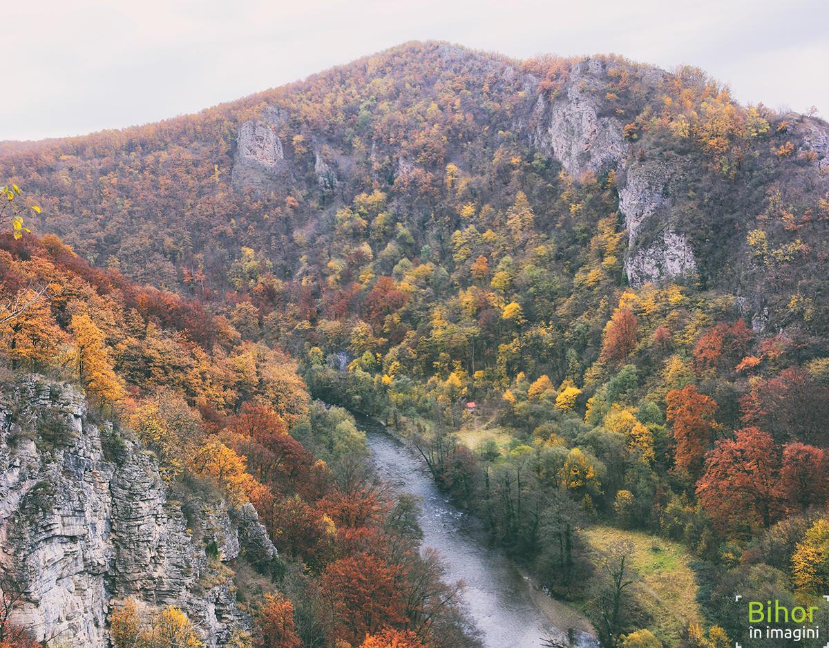 Peisaj de toamna din Șuncuiuș