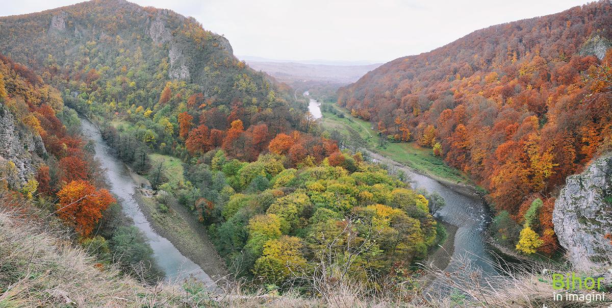Autumn Landscape of the Crisul Repede River