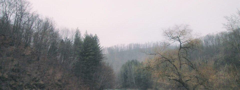 Vida lake frozen