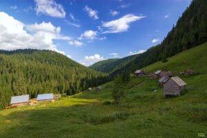 Valea Gârdişoara01