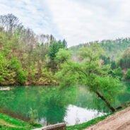 Traseu turistic pe bicicletă Aleșd – Luncasprie