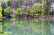 Vida lake in spring
