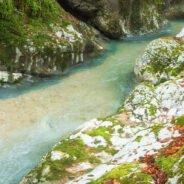 Trail: Pietroasa village – Arieşeni village
