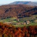 Comuna Rosia Lazuri Arini