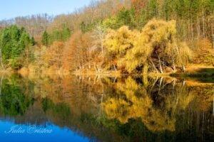 Lacul Vida Toamna Iulia Cristea