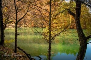 Lacul Vida Toamna Iulia Cristea01