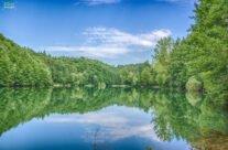 O zi de vară pe lacul Vida
