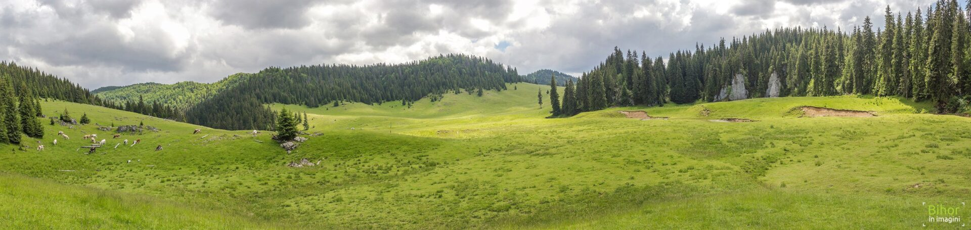 Ponor Glade Panoramic view