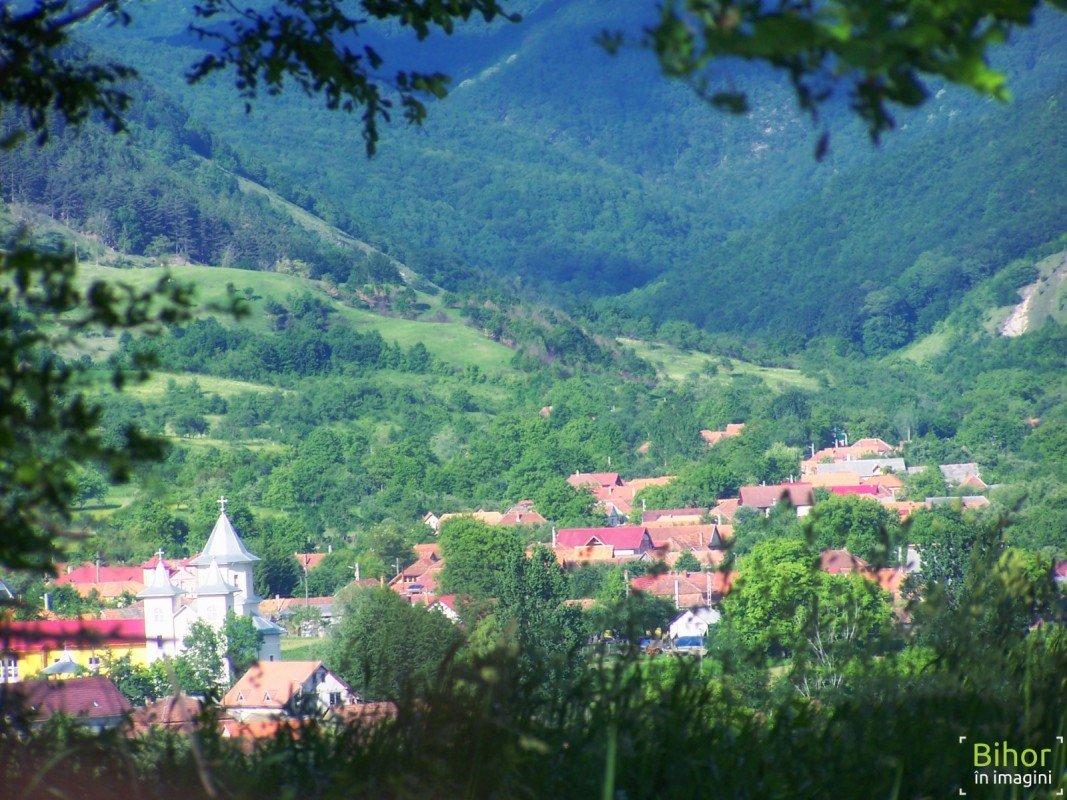 Printre frunze, satul Peștiș