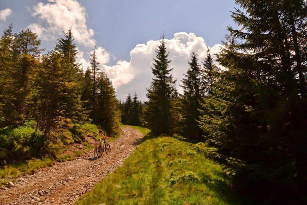 Traseu Stana de Vale - Vf Poieni01