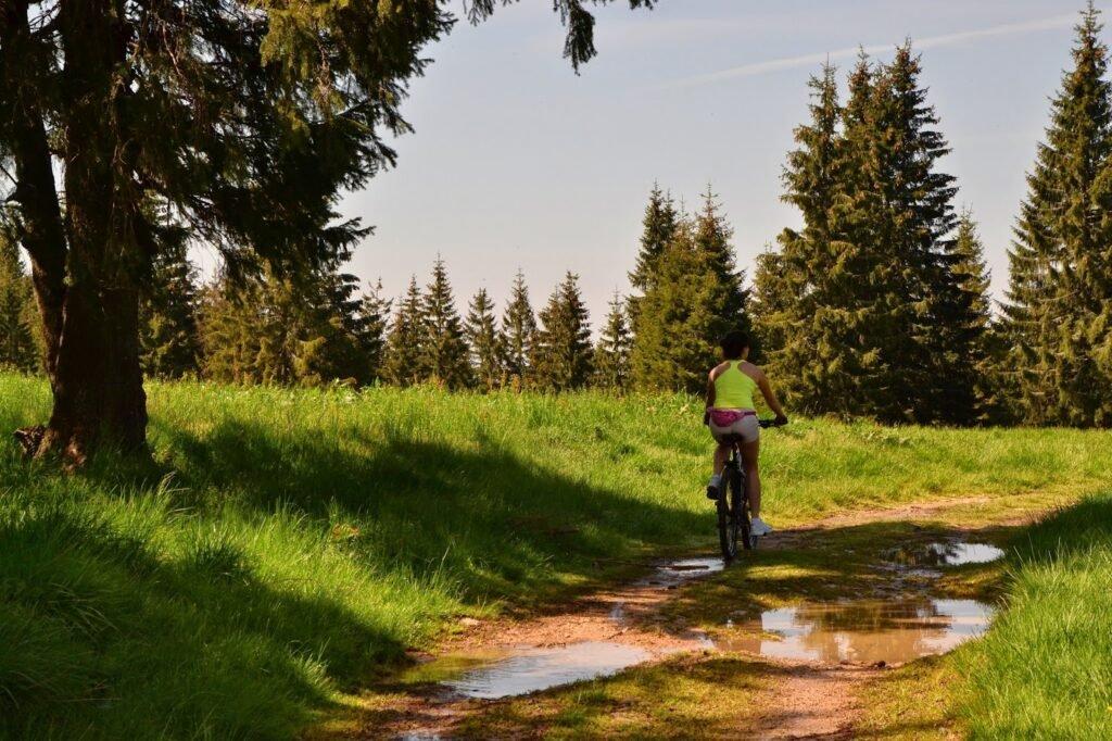 Traseu Stana de Vale - Vf Poieni02