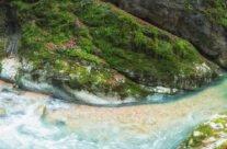 Jgheabului Gorges ‐ Wild gorges in Apuseni