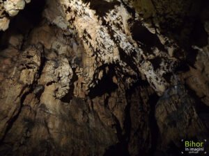 Formațiunii în Peștera Vadu Crișului01