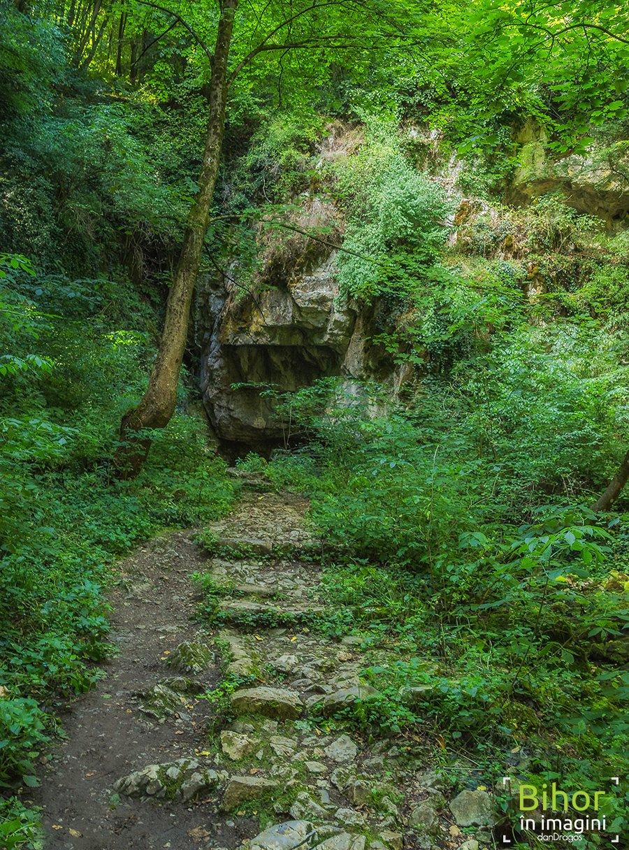 Intrare în Peștera Vadu Crișului