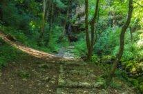 Intrarea în Peștera Vadu Crișului