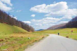 Spre satul Damiș
