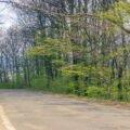 Traseu turistic pe bicicleta Aleșd - Bratca