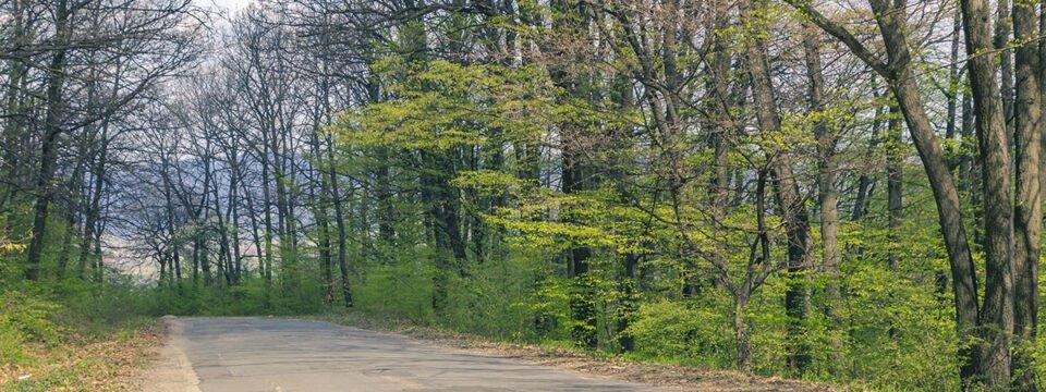 Trail on bike: Șuncuius village – Zece Hotare village – Tășad village – Oradea city
