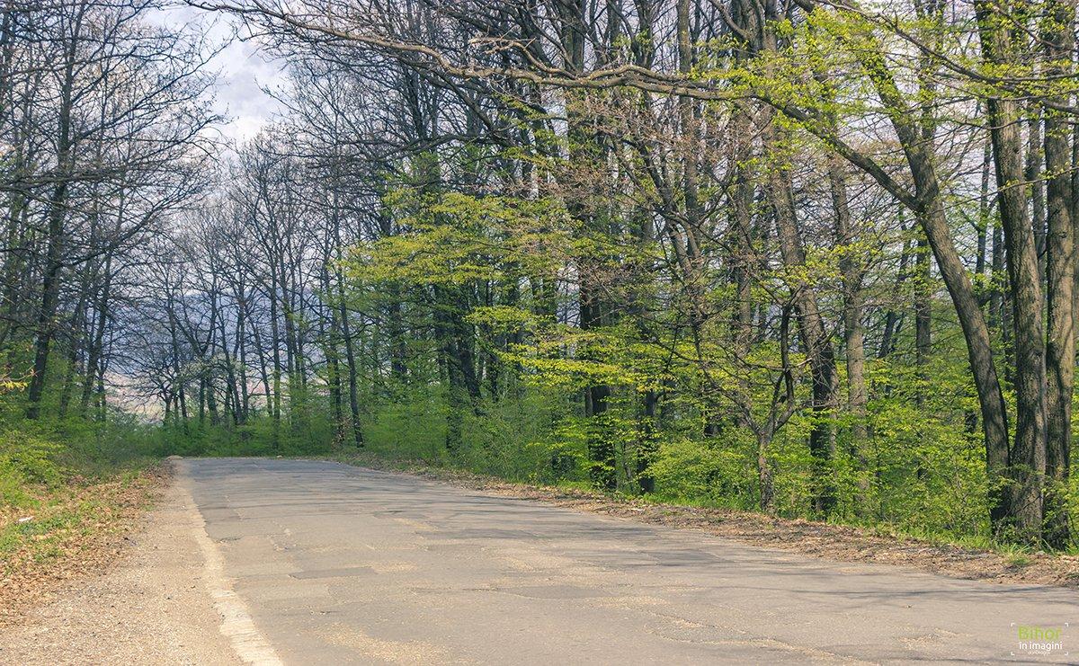 Traseu turistic pe bicicleta Șuncuius-Zece Hotare-Tășad-Oradea