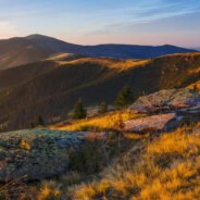Traseul Sat Lazuri – Cabana Silvică Valea Lungă – Vf. Curcubăta Mare