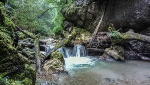canyoning_cheile_jgheabului_nokia_808_pureview_7