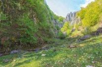 Cuților gorge