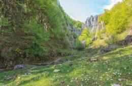 Cuților Gorges