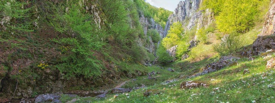 Cuților gorge trail